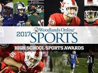 2017 Woodlands Online football awards