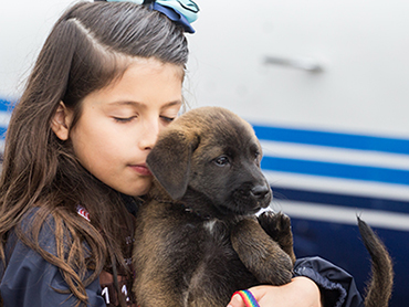 Operation Pets Alive Puppy Rescue Flight