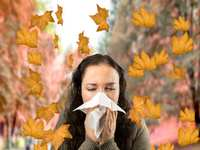Fall into Allergy Season