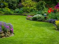 Six Tips to Make Your Landscaping Look Great!