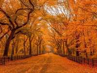 Fall and Winter Travel Destinations