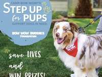 Step Up For Pups Challenge