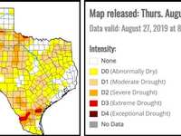 Irrigate an inch this week... but no more than an inch! Don't wait for the drought, folks! Conserve