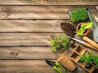 Landscaping And Lawncare Tips For March