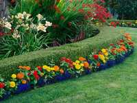 Landscaping and Lawn Care Tips for April