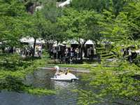 The Woodlands Waterway Arts Festival is THIS WEEKEND, April 9 to 11!