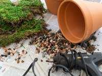 DIY Toad House: Make The Perfect Toad Abode